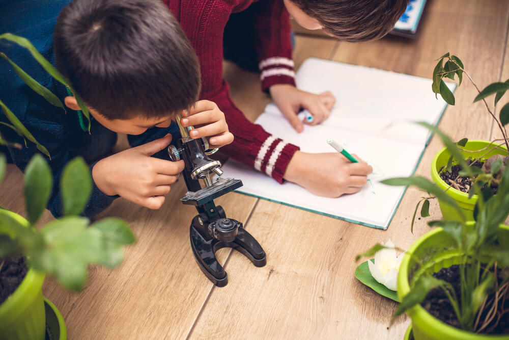 Virtual Field Trips - Kids discovery learning