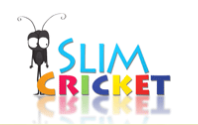 Slim Cricket at All Digital School